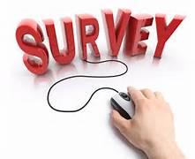survey resized 600